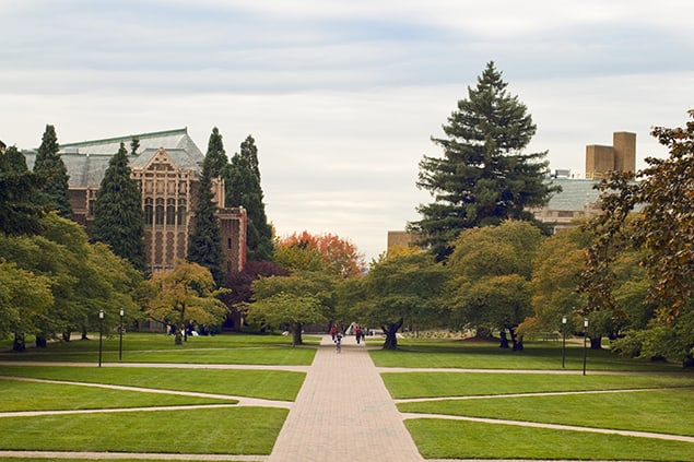 Quandrangle lawn at the University of Washington